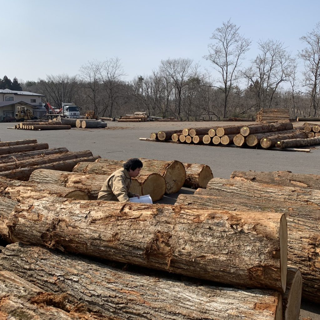 原木市場で入札