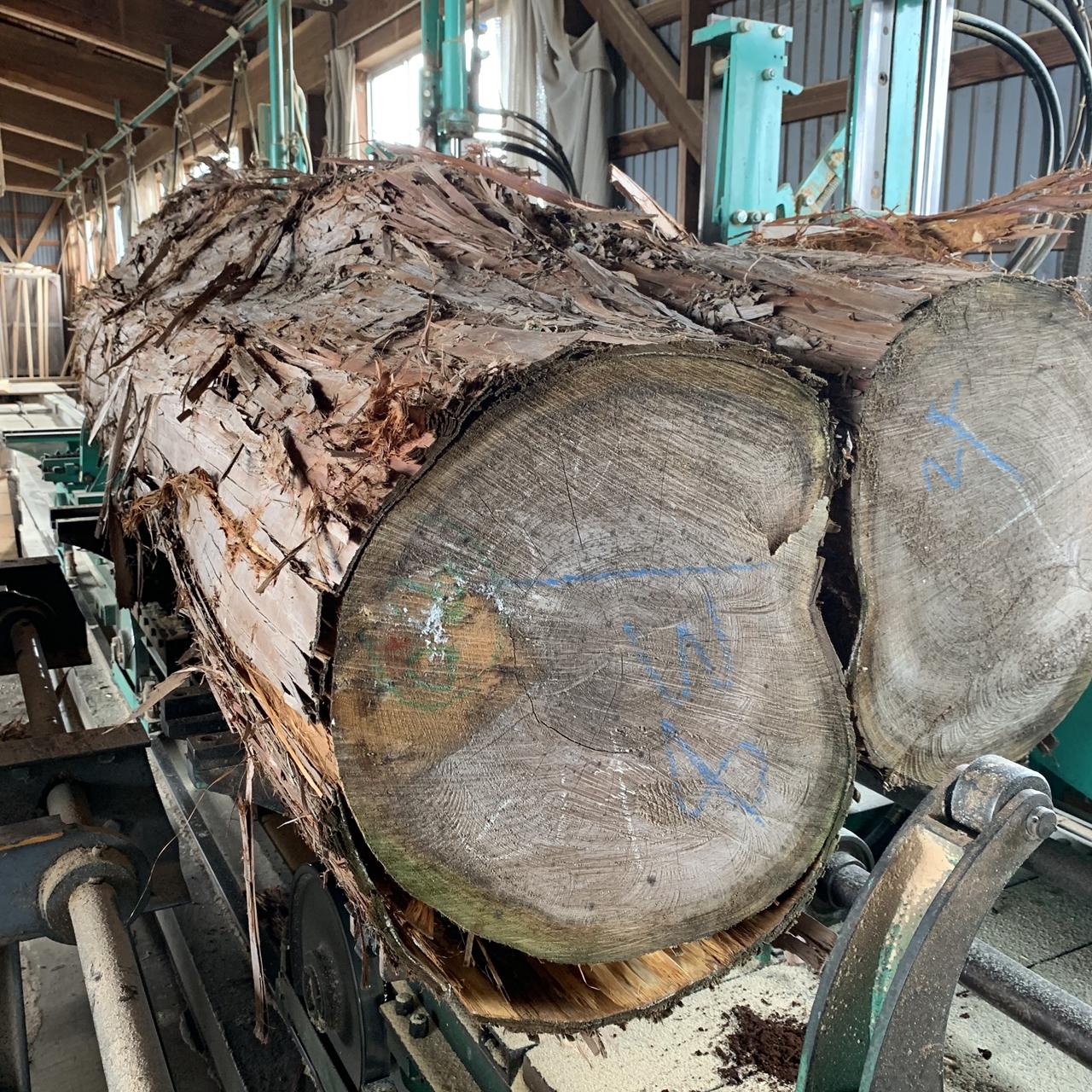 原木の製材方法【製材の考え方】一般木材とカウンター一枚板の製材方法の違い。