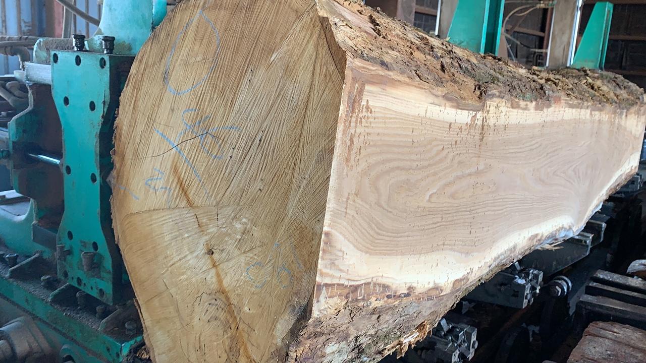 原木から一枚板を製材